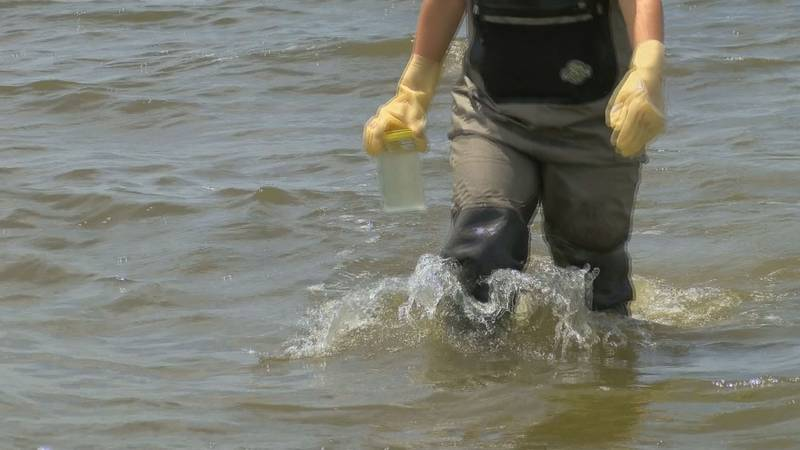 A Mississippi Department of Environmental Quality employee carries a water sample from the...