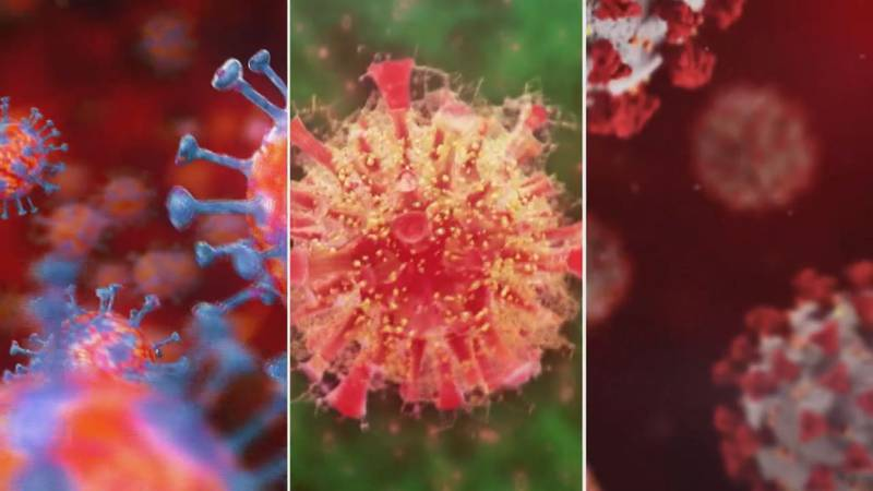 VCU director of microbiology Dr. Christopher Doern says these strains develop when the virus...