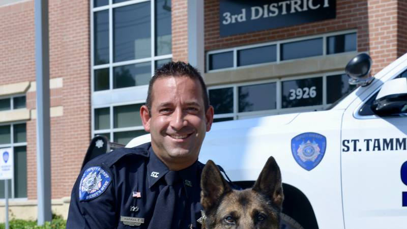 After almost a decade of fighting crime, K-9 Deputy Cado will enjoy some much deserved time off.
