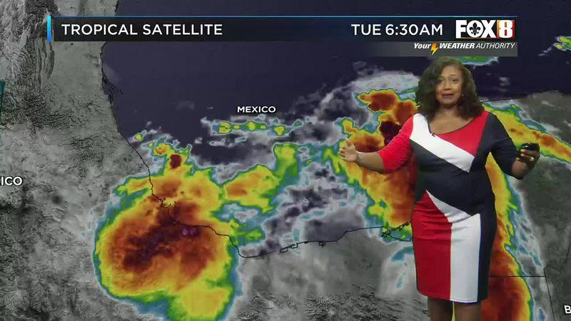 Nicondra's Noon forecast