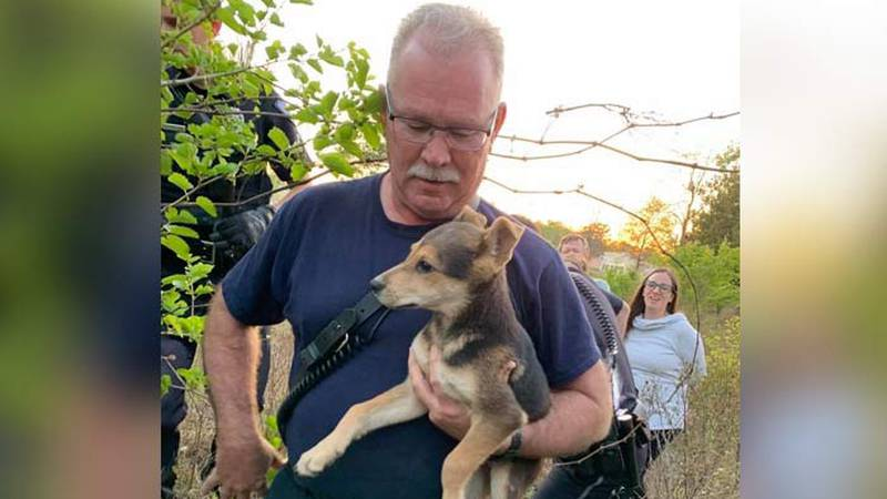 The North Charleston Fire Department rescued a puppy trapped under a pile of rocks Saturday....