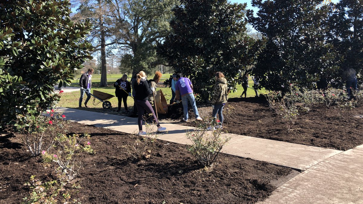 New Orleans college students volunteer with City Park.