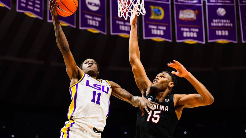 Josh LeBlanc Sr. (11) of the LSU Tigers during a game against the South Carolina Gamecocks at...