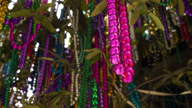 Get ready for the first big week of Carnival season around New Orleans.