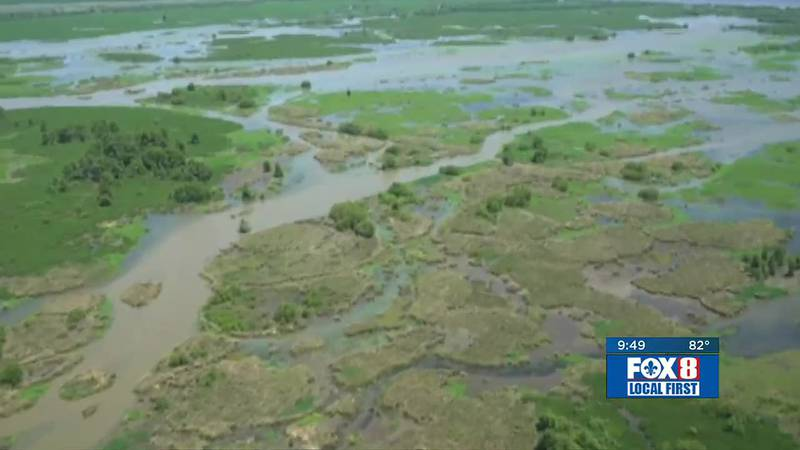 The Mid-Barataria Sediment Diversion Project stirs strong emotions on both sides