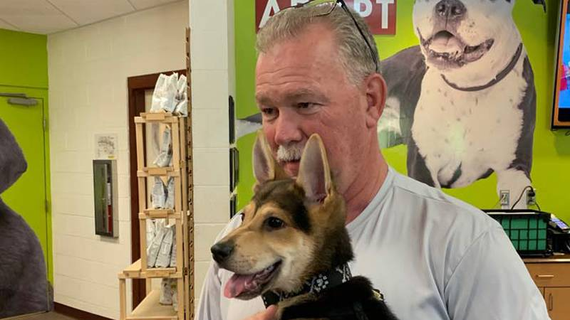 North Charleston Fire Capt. Paul Bryant and Rocky. (Source: Live 5)