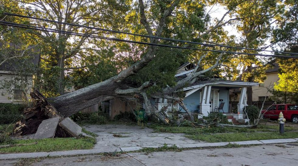 A tree downed by Zeta on a home in Metairie, Louisiana.