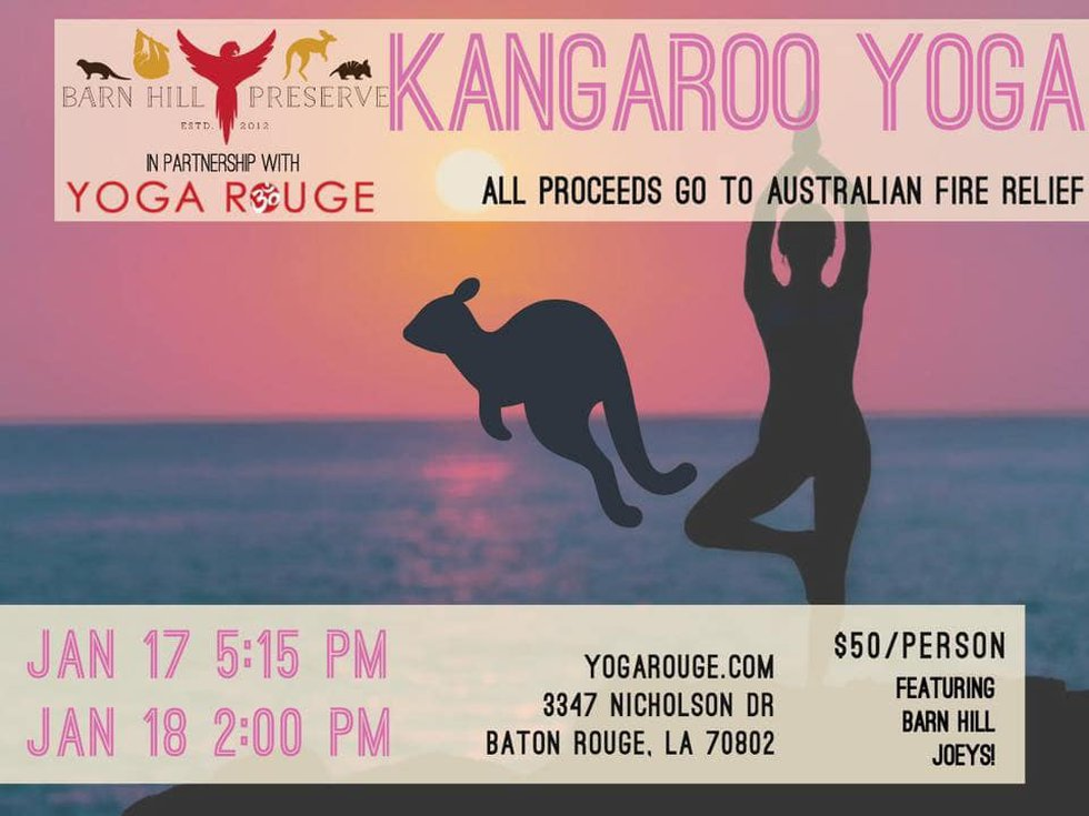 Barn Hill Preserve is hosting a kangaroo yoga class to raise critical funds for supplies needed...