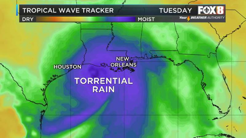 A tropical system is expected in the Gulf of Mexico by the weekend with the central and western...
