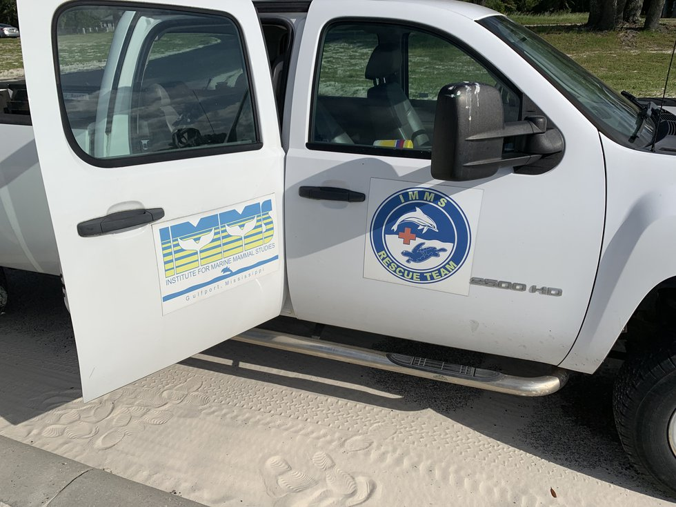 IMMS has a rescue team that responds to sick and deceased marine life along the Gulf Coast.