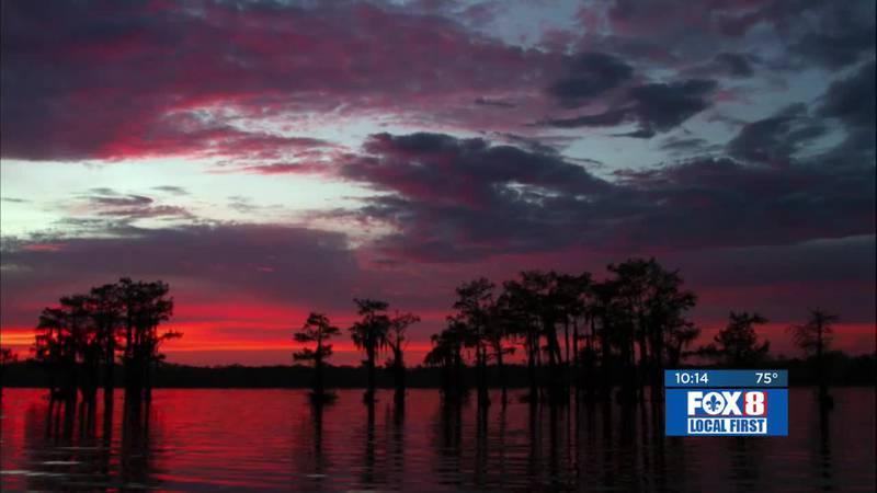 """Louisiana's Atchafalaya Basin """"feels like a national park"""""""